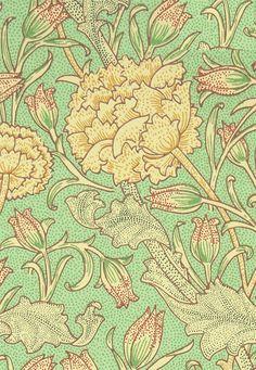 Wild Tulip Detail Designed by William Morris in 1884