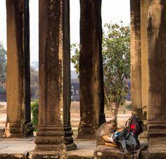Siem Reap - 2 Dias Chegam? (Parte II) Ta Prohm, Angkor, Siem Reap, Animals, Sunrise, Temples, Beautiful Images, Places, Animales