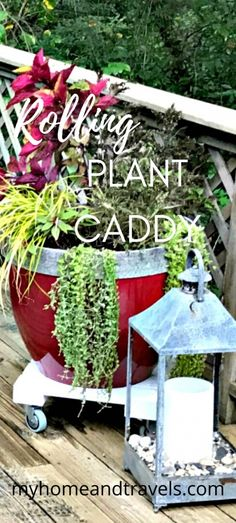 DIY A Rolling Plant Caddy - My Home and Travels Upcycled Crafts, Diy Home Crafts, Organic Gardening, Gardening Tips, Big Box Store, Garden Types, Small Space Gardening, Diy Garden Decor, Garden Ideas