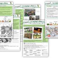 Science For Kids, Learn French, Primary School, Kids Learning, Homeschool, Teacher, Education, France, Cycle 2