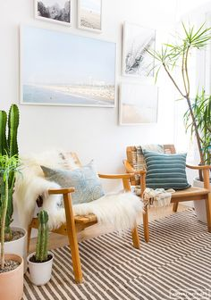 Pretty beachy relaxed decor with natural accents, house plants and blues