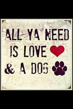 'All ya need is Love & a Dog'....preferably a French Bulldog, but I love them all ; )