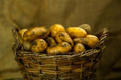 Everything You Need to Know About Storing the Food You Grew - Preparing for shtf