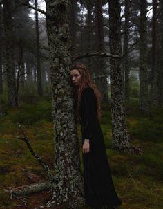 Forest Dark...