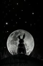 Image result for moon rabbit art