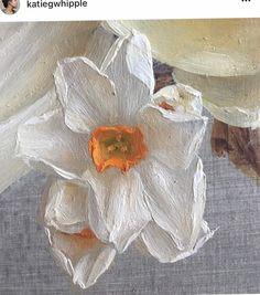 Katie G. Whipple