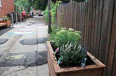 La ruelle des générations sera inaugurée ce samedi dans le cadre des Journées des ruelles vertes de Montréal. (photo: YQQ)