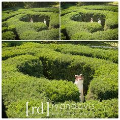 Getting Married At Klehm Arboretum On Pinterest Fountain Garden Ivory Wedding Dresses And