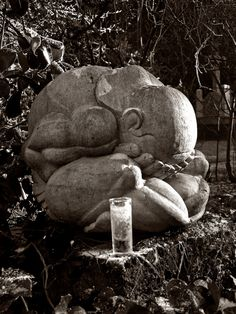 Weeping Buddha   by Vineyards