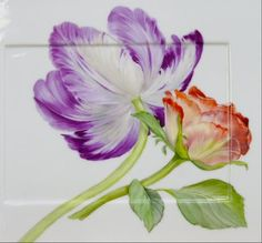 flowers square plate