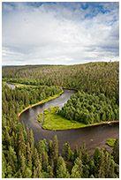 Jarmo Mannisen Luontokuvia