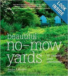 Beautiful No-Mow Yards: 50 Amazing Lawn Alternatives: Evelyn J. Hadden: ... showcases dozens of inspiring, eco-friendly alternatives to that demanding (& dare we say boring?) green turf. Trade your lawn for a lively prairie or replace it with a runoff-reducing rain garden. Swap it for an interactive adventure garden or convert it to a low-maintenance living carpet...  you can transform your lawn into a livable garden & bring nature's beauty into your life!