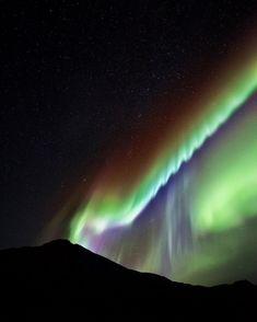 1,550 отметок «Нравится», 56 комментариев — René Ringnes, Norway (@ringnes_photo) в Instagram: «Nature's own glowstick  . . . . . . . . #visitnorway #ilovenorway #norge #norway #northernlights…»