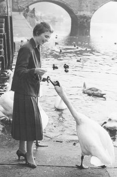 Jean Seberg, c.1958