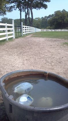 Nice idea for the summer months: freeze gallon jugs of water and place them in horse's water tanks to keep drinking water cool.