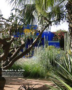 The charm of the blue decoration. #Marrakech #design #decor #blue #color #casadevalentina #plants