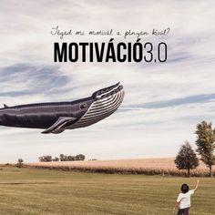 Fontosabb a pénznél az önállóság. Ez a Motiváció 3.0!