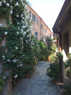 Ah, la Bellissima #Italia!! En el pueblo de Marciana en plena #Toscana encontrarás tranquilidad, vida rural y gente auténtica. ¿Apetece un intercambio de casas?