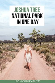 The perfect itinerary for one day in Joshua Tree National Park in California including the best hikes in Joshua Tree and Joshua Tree Instagram photo spots. This guide includes the best things to do in Joshua Tree along with Joshua Tree photography. Joshua Tree California is one of the best national parks in California and one of the best national parks in the United States. Joshua Tree is a must stop on a California road trip, and you can definitely see Joshua Tree in one day. California National Parks, Us National Parks, California Travel, Death Valley National Park, Joshua Tree National Park, Tree Day, Travel Usa, Travel Tips, Tree Photography