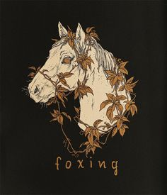 """teaganwhite: """"My newest t-shirt design for Foxing. These and one other shirt I drew are available now on their website (and grab their new record while you're there! Botanical Illustration, Illustration Art, Witch Art, Fox Art, Animal Posters, Urban Art, Figurative Art, Animal Drawings, Art Pictures"""