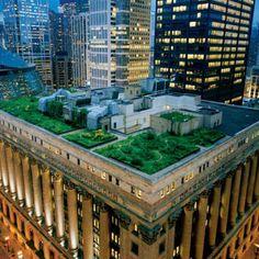 orto sul tetto e orti urbani, esperienze positive da seguire