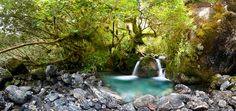 Divine pool far of the beaten track in New Zealand - Pixdaus