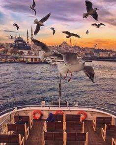 This view is something to inspire. Nature is the greatest muse I have ever had the pleasure of being in its presence! Istanbul City, Istanbul Travel, Montenegro, Ankara, Bósnia E Herzegovina, Turkey Photos, Travel Tags, Dream City, Turkey Travel
