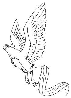 articuno coloring pages - suicune coloring pages google search coloring pages