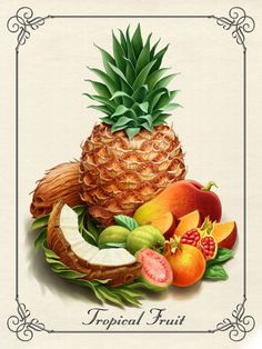 Pineapple drawing, all fruits, fruits and vegetables, paintings famous, fruit illustration All Fruits, Best Fruits, Fruits And Vegetables, Fruit Illustration, Food Illustrations, Botanical Illustration, Pineapple Drawing, Fruit Juice Recipes, Food Clipart