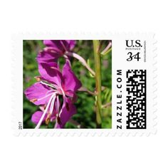 Fireweed Postage - photography gifts diy custom unique special