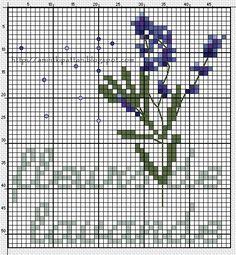 Fleur de Lavande Free Cross Stitch Chart