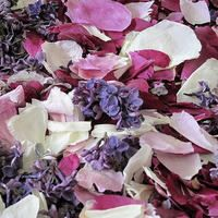 Peony & Lilac Preserved Freeze Dried Petal Blend. VERY POPULAR! Petals are all natural & freeze dried  Non-staining, not slippery. All natural, eco-friendly & biodegradable!   Flyboy Naturals Grows thousands of peonies & lilacs for our petal production www.flyboynaturals.com #rosepetals #flyboynaturals #petals #wedding #peonylilacpetals  #weddingpetals #aisle #bridetobe #ceremony