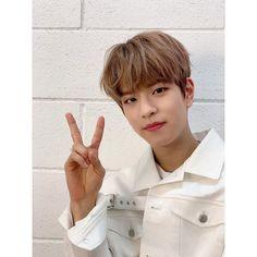 Stray Kids Seungmin, Hold My Hand, Kids Wallpaper, Lee Know, Lee Min Ho, Seoul, Boy Groups, Instagram, Kpop
