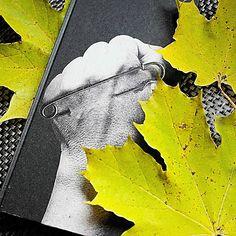 Kirja vieköön!: #Anja Kauranen #Syysprinssi