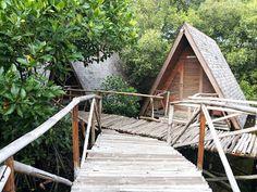 Mangrove PIK blognya ika_anthem: Hutan Bakau PIK, Seafood 94 Mulyono Kalimati Pademangan, Markobar Cikini