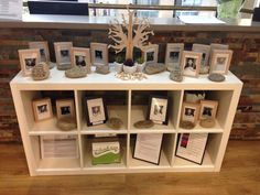 North Sydney's belonging tree display shares photos of the team & a quote or…