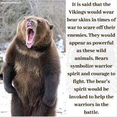 Bear Symbolism Bears symbolize warrior spirt and courage to fight. Bear Spirit Animal, Spirit Bear, Animal Spirit Guides, Animal Meanings, Animal Symbolism, Bear Meaning, Mama Bear Quotes, Bear Totem, Spiritual Animal