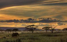 good night tanzania 2 by Amnon Eichelberg on 500px