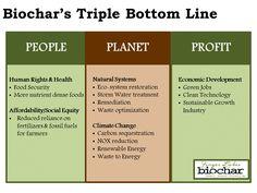 Biochar's Triple Bottom Line Triple Bottom Line, Carbon Sequestration, Green Jobs, Clean Technology, Food Security, Economic Development, Water Treatment, Climate Change, Natural Health