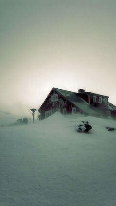 /\ /\ . Lapland