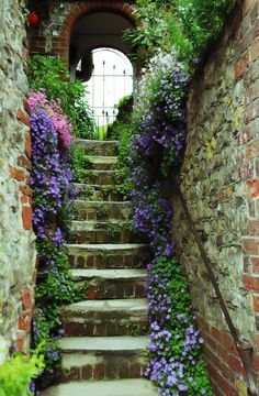 This is how they do stairs in Amberley, West Sussex. This is how all outside stairs should be. Garden Steps, Garden Paths, The Secret Garden, Secret Gardens, Garden Cottage, Garden Living, Home And Garden, Stairway To Heaven, Dream Garden