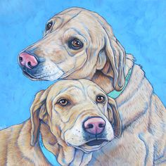 Sasha and Leonard the Yellow Labrador Retreiver Dogs by Bethany