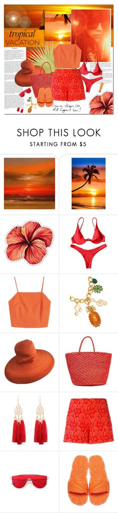 """#tropicalvacation"" by undici ❤ liked on Polyvore featuring LaMont, Dolce&Gabbana, Paul Frank, Sensi Studio, Giamba, Miu Miu and MDSolarSciences"