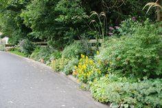 2009 Raymond's garden