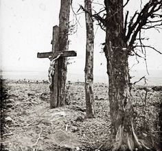 Christ on cross on tree in Fricourt, France, during World War I