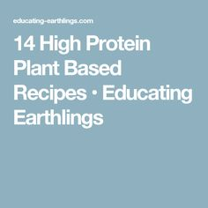 14 High Protein Plant Based Recipes • Educating Earthlings