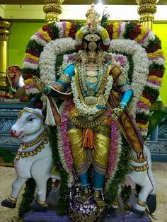 Shiva, Krishna, Fair Grounds, God, House, Pictures, Dios, Home, Allah