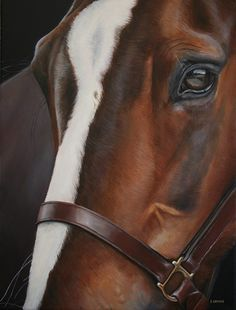 Gorgeous George A beautiful cob x Tb, whos portrait I painted for a customer. He had the kindest eye I have seen on a horse, I was rather smitten. 12 x 16 Acrylic on canvas https://www.facebook.com/ArtistStephanieGreaves/