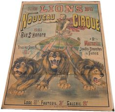 for the garage? Carnival Posters, Circus Poster, Lion, Tent Fabric, French Vintage, 2013, Garage, Google Search, Cirque Du Soleil