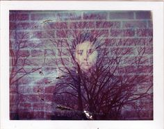 Cleveland Park, 2013   #polaroid #instant #film #doubleexposure #manipulation